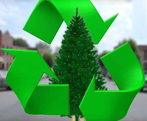 Christmas tree and holiday recycling EDCO to offer free tree disposal Dec.  26 to Jan 8 | San Elijo Life - Christmas Tree And Holiday Recycling EDCO To Offer Free Tree